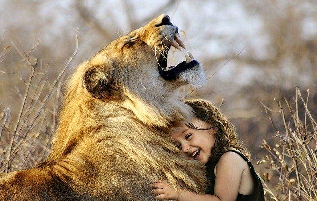 Leijona ja tyttö